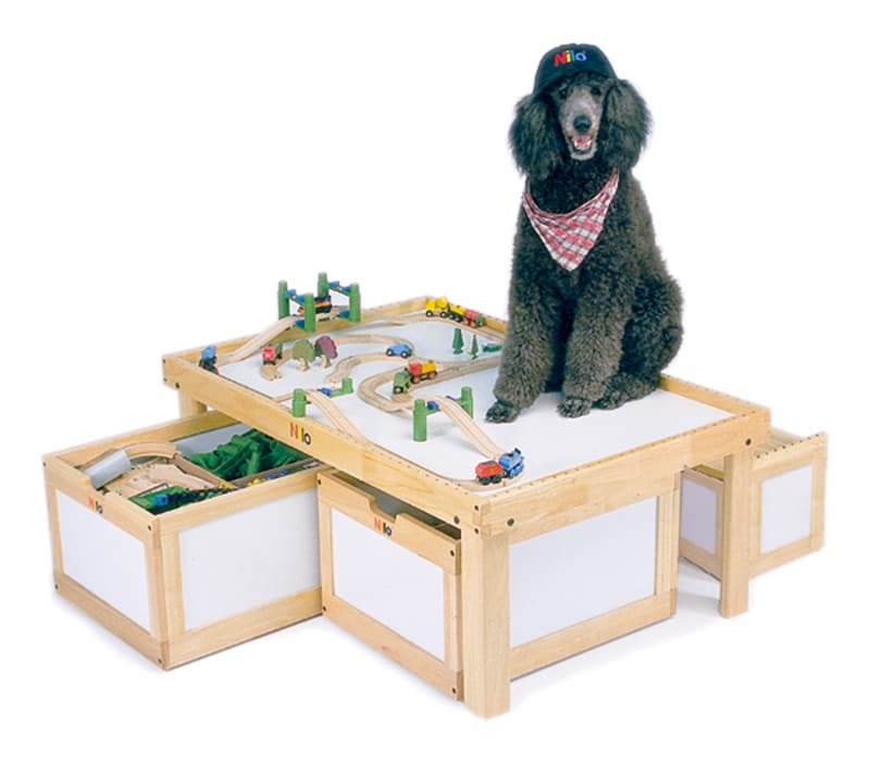 Dog on Activity Table